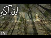 ویدئو / دردانه خلقت - به مناسبت ولادت امام حسین علیه السلام
