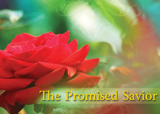 Video / The Promised Savior