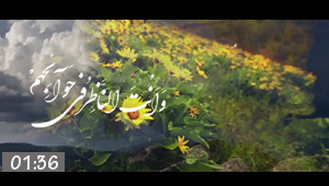 Video / The Prayer of Eid al-Adha