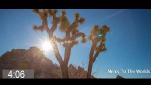 mercy-to-yhe-world.jpg